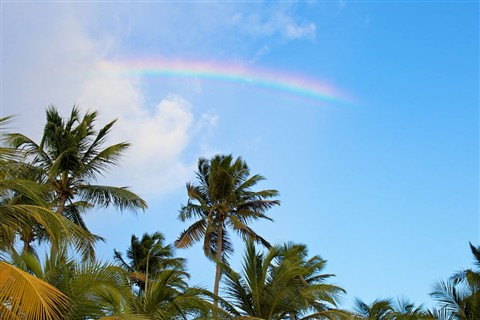 Guadeloupe Rainbow