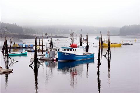 Beaver Harbour dpr