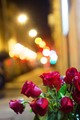 I was walking in Rome during a cold night when someone, entering a cafeteria, left a red roses bouquet on the road sidewalk. I was carrying my Canon T3i with me and I was fascinated by the red roses bouquet left alone, like if it was waiting for something...