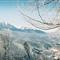 Ski Predeal Film Fuji ieftin ISO200 Rollei 35B -18