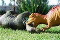 Dino Attack!!