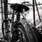 T5D_0893-rustybike