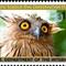 owlstamp