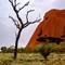 Uluru (5 of 7)