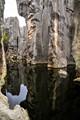 Kunming carved rocks forest