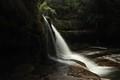 Liffey Falls 3