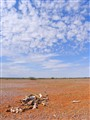 Pitiless drought sky