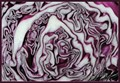 Red cabbage, cross-section