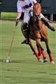 sports_apr_2011_-7140