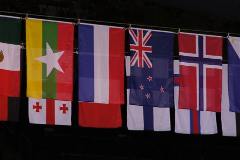 Paralympic Flags