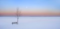 At the edge of frozen lake