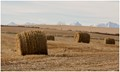 Bales in the Foothills
