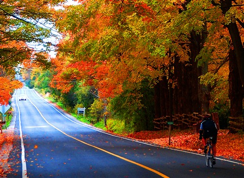 Autumn Cycling 3 v2 reduced