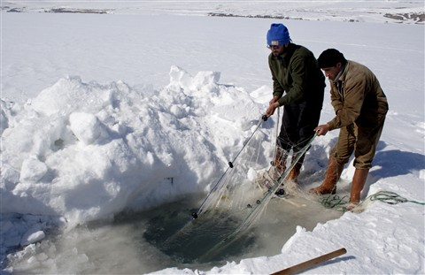 Fishing in The Frozen Lake