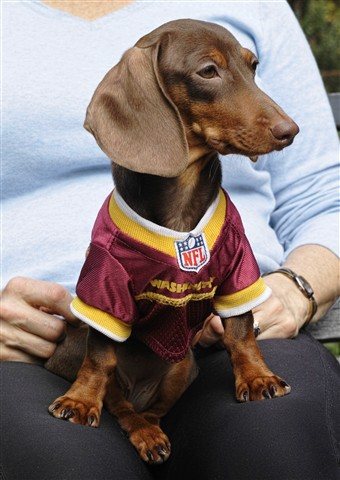 rita the redskin fan
