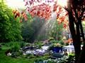 Sun rise 5-30-10 002-1