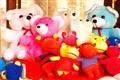 Punta del Este toy store
