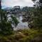 Bluefish Cove Point Lobos