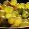 sour grapes .i