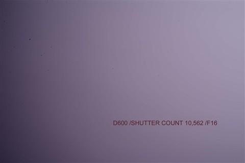 F16 SHUTTER COUNT 10562