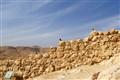Masada guards