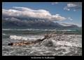 Welcome to Kaikoura, New Zealand