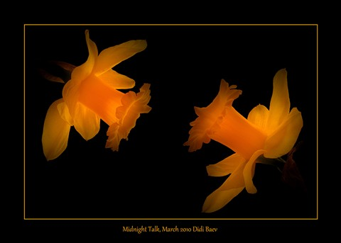 Midnight Talk
