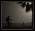 Biking in a foggy night