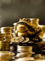 Golden Frog on a Nest of Coins
