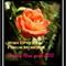 Rose Merry