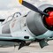 Russian fighter-