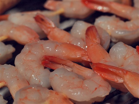 Shrimps-s-s-s-s