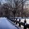 NY-Snow-15