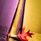 Gold and Purple Colour Split 001