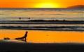 Yoga at Salt Creek Beach...