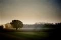 Rural dawn