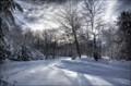 My Own Winter Wonderland.