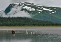alaska coatal landscape near lake clark np