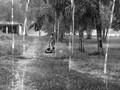 Under heavy rain