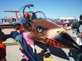 Aero L-29 Delfin Trainer at the Airshow