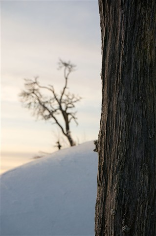 wintersun2