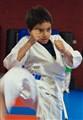 Karate Kid Silent Hands