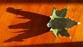Hard leaf