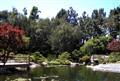 Japanese Garden CSULB