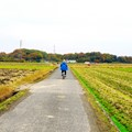 Cycling under the Autumn Air