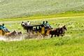Yellowstone Express