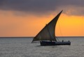 Zanzibar looking West towards the African Mainland - the sunset Dhow parade past the tourist hotels.