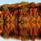 Oak Grove Autumn