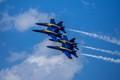 Blue Angel 4 pack