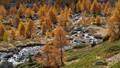 Fall in Valais